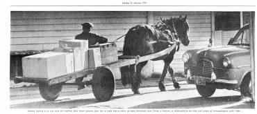 Hest i bybildet, avisartikler